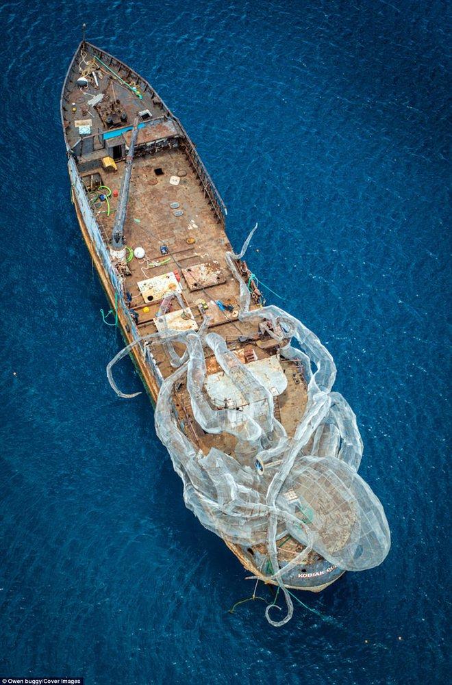 Dựng video con tàu nổi tiếng thời Thế chiến 2 bị thủy quái khổng lồ Kraken đánh đắm - Ảnh 5.