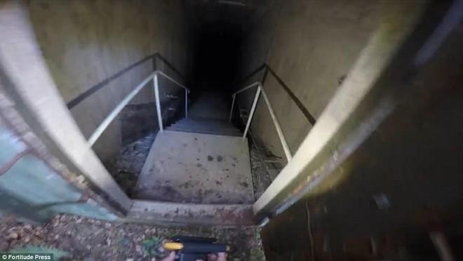 Thâm nhập căn hầm bị bỏ hoang giữa rừng sâu: Nhóm thám hiểm chỉ dám vào 3 phút - Ảnh 2.