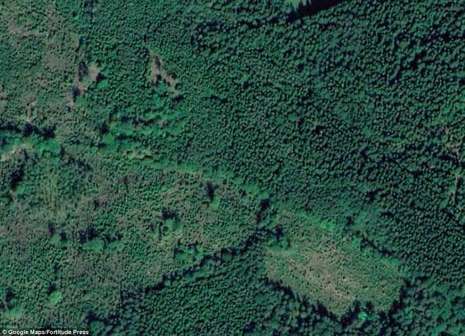 Thâm nhập căn hầm bị bỏ hoang giữa rừng sâu: Nhóm thám hiểm chỉ dám vào 3 phút - Ảnh 9.