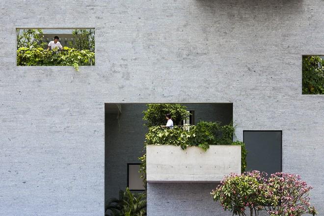 Cận cảnh kiến trúc Việt được vinh danh ở giải thưởng Nhà ở của năm - Ảnh 6.
