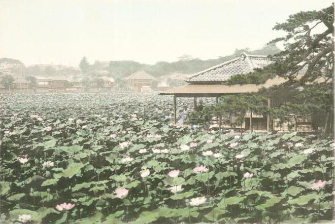 Chùm ảnh: Từ một làng chài nhỏ, Tokyo lột xác trở thành thủ đô hoa lệ bậc nhất thế giới - Ảnh 8.