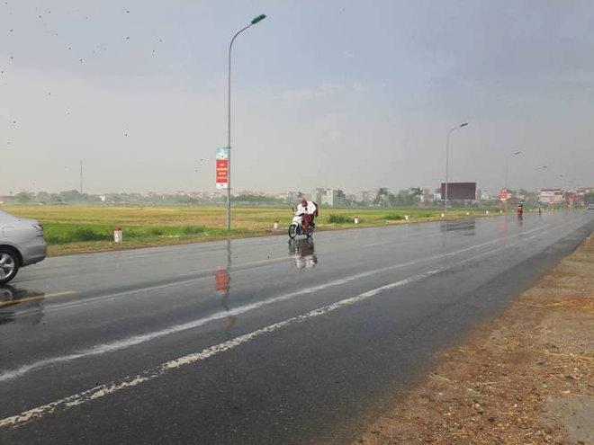 Cơn mưa vàng đã xuất hiện ở ngoại thành Hà Nội - Ảnh 1.