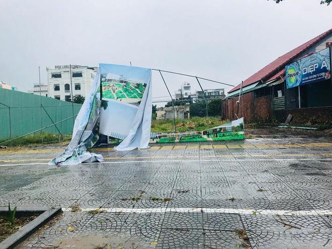 Cây xanh bật gốc, đè ô tô trên đường phố Đà Nẵng - Ảnh 3.