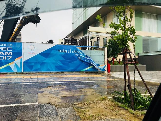 Cây xanh bật gốc, đè ô tô trên đường phố Đà Nẵng - Ảnh 2.
