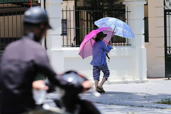 Người Hà Nội mặc bìa carton, hai tay hai ô giữa ngày nắng nóng lịch sử - Ảnh 1.