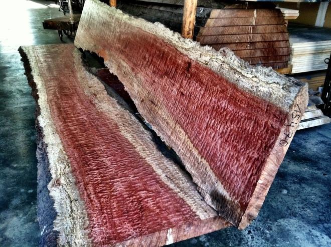 Những cây gỗ tươi quý hiếm bậc nhất thế giới, có giá trên trời mà đại gia săn lùng - Ảnh 6.