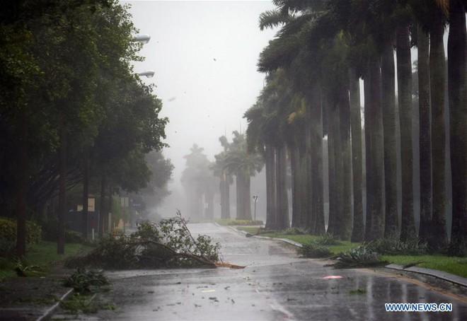 Siêu bão quái vật Irma tấn công dữ dội, Florida chới với trong biển nước - Ảnh 6.