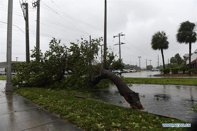 Siêu bão quái vật Irma tấn công dữ dội, Florida chới với trong biển nước - Ảnh 10.