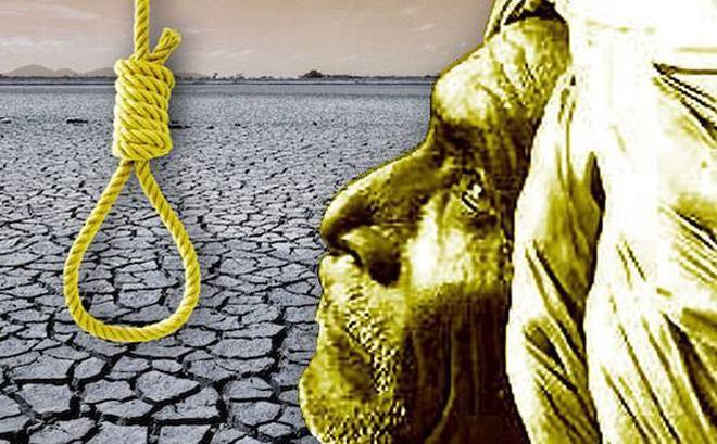 Gần 60.000 người Ấn Độ tự sát vì biến đổi khí hậu: Khi thuốc sâu không dùng cho cây trồng!