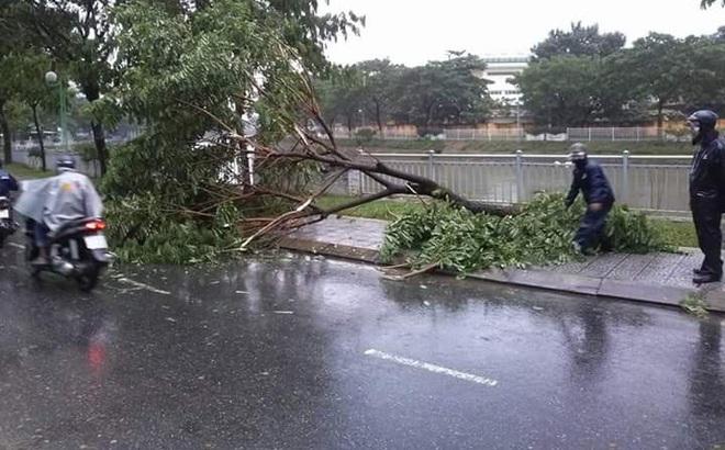Chủ tịch Đà Nẵng kêu gọi khắc phục hậu quả mưa bão để đón tuần lễ Apec 2017