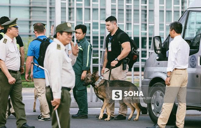 [ẢNH] Quy trình đảm bảo an toàn tuyệt đối cho tổng thống Trump tại sân bay ở Việt Nam - Ảnh 1.
