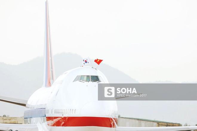 Cờ Việt Nam nổi bật trên máy bay chở lãnh đạo Hàn Quốc, gương mặt mới của APEC - Ảnh 2.