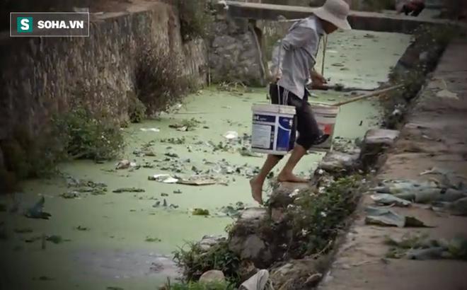 Video: Cận cảnh rau sạch tưới nước bẩn tại Hà Nội