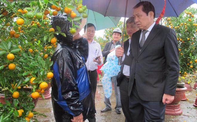 Đà Nẵng lên tiếng việc kê khai tài sản của Chủ tịch thành phố