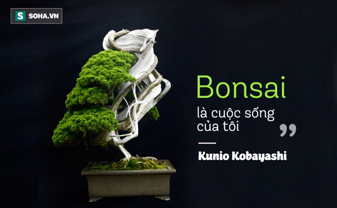 Bậc Thầy Bonsai Nhật Va Bi Mật Của Vườn Cảnh Trăm Tuổi được