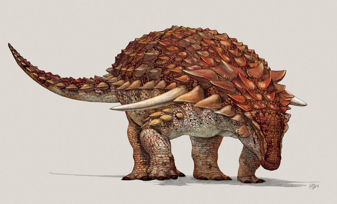 Phát hiện bất ngờ từ mẫu hóa thạch khủng long hoàn hảo, được ví như Mona Lisa - Ảnh 2.
