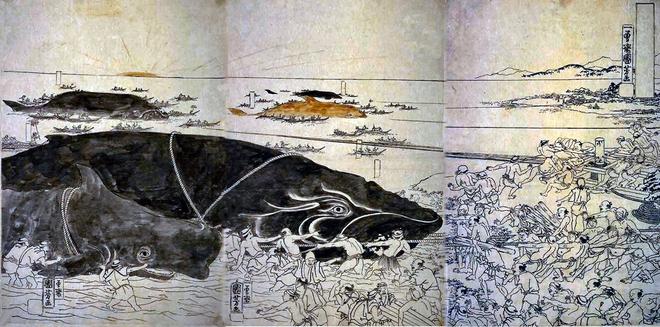 Bí ẩn lời nguyền đáng sợ của quái vật biển Bakekujira: Kẻ khổng lồ trở về từ cõi chết - Ảnh 3.