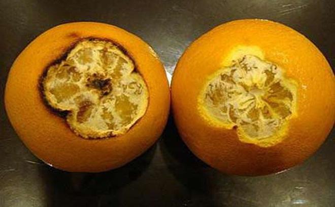 Thần kỳ chữa ho có đờm cho trẻ sơ sinh bằng cam nướng
