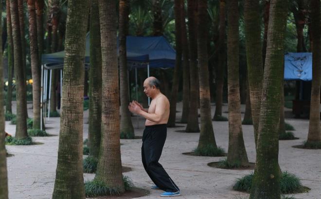 """Chữa bệnh bằng cây xanh: Một trào lưu dưỡng sinh mới đang """"nở rộ"""" ở Trung Quốc"""