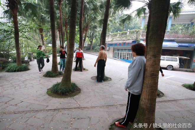Chữa bệnh bằng cây xanh: Một trào lưu dưỡng sinh mới đang nở rộ ở Trung Quốc - Ảnh 5.