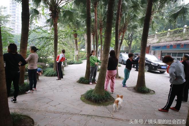 Chữa bệnh bằng cây xanh: Một trào lưu dưỡng sinh mới đang nở rộ ở Trung Quốc - Ảnh 6.