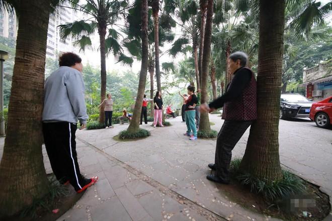 Chữa bệnh bằng cây xanh: Một trào lưu dưỡng sinh mới đang nở rộ ở Trung Quốc - Ảnh 8.