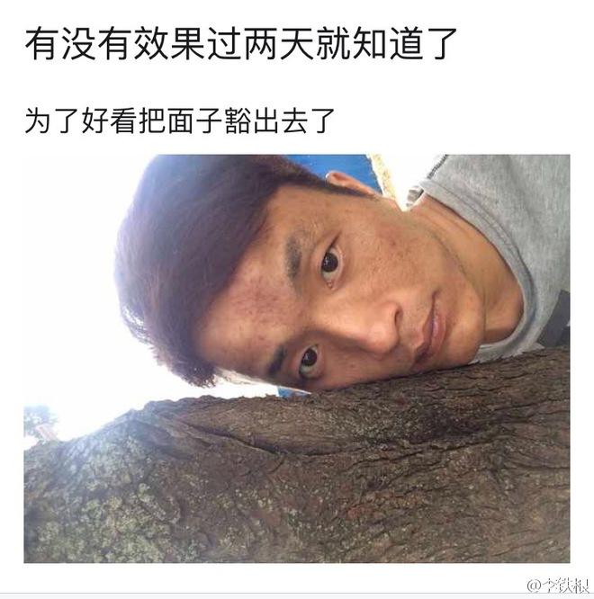 Chữa bệnh bằng cây xanh: Một trào lưu dưỡng sinh mới đang nở rộ ở Trung Quốc - Ảnh 10.