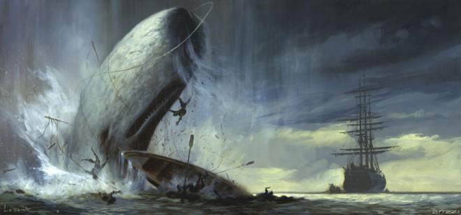 Moby - Huyền thoại về cá voi trắng và cuộc trả thù tàn khốc đối với con người - Ảnh 3.