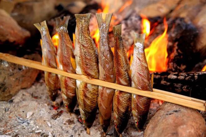 5 nhóm người nên đặc biệt cẩn thận khi ăn cá để không phá sức khỏe - Ảnh 2.