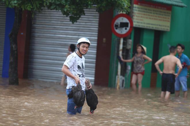 Nước tràn qua bờ đê, Nghệ An kêu gọi người dân sơ tán khẩn cấp, gió đổi chiều, Hà Tĩnh tan hoang trong bão - Ảnh 6.