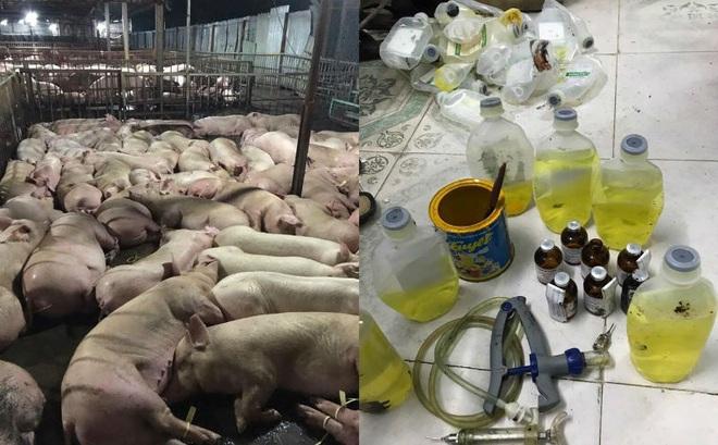 Ăn thịt lợn có thuốc an thần, bộ phận nào trên cơ thể chịu tác hại nặng nhất?