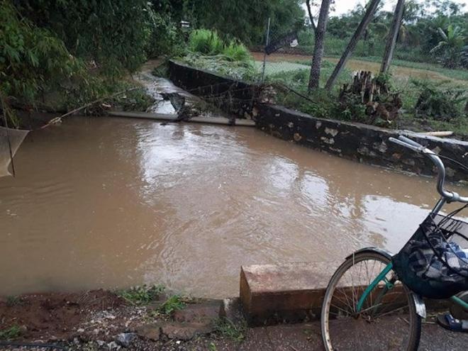 Nghệ An: Nam sinh lớp 12 dũng cảm lao xuống dòng nước cứu người phụ nữ bị lũ cuốn ngất xỉu - Ảnh 1.