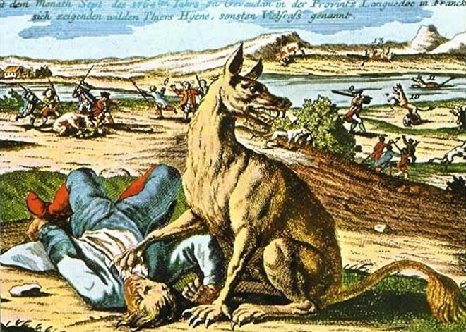 Truyền thuyết có thật về những con quái thú khát máu vùng Gévaudan - Ảnh 1.