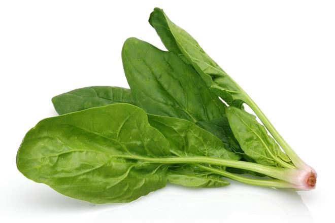 Món ăn bổ thận ích tinh, chữa táo bón nức tiếng Đông y chỉ với những nguyên liệu dễ kiếm - Ảnh 3.