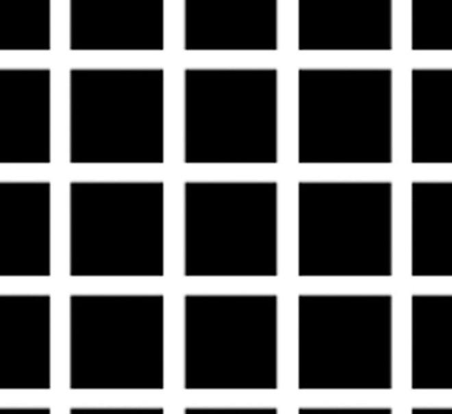 10 ảo ảnh thị giác vi diệu này sẽ thôi miên trí não bạn như thể ma thuật vậy - Ảnh 2.