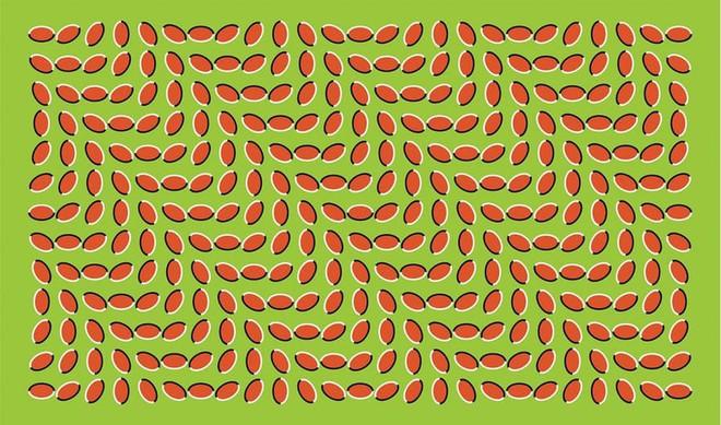 10 ảo ảnh thị giác vi diệu này sẽ thôi miên trí não bạn như thể ma thuật vậy - Ảnh 1.