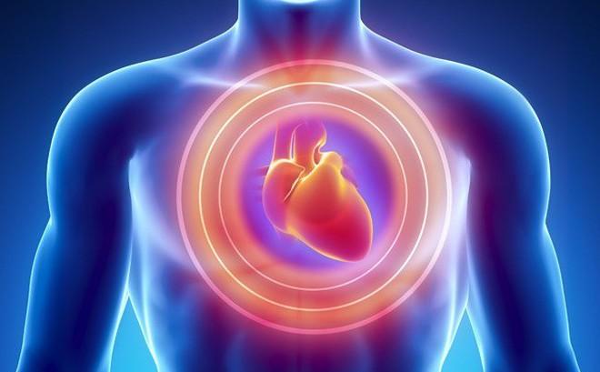 [Video] Sự khác biệt giữa đau tim, ngưng tim, đột quỵ: Biết rõ để xử lý rủi ro hiệu quả