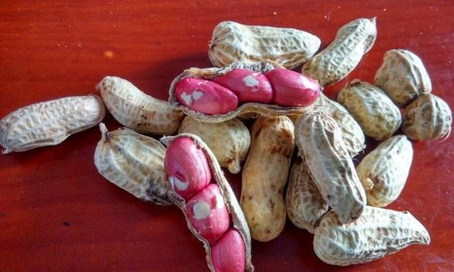 Những bài thuốc quý chỉ với một nắm hạt có sẵn trong bếp: Có thể bạn cũng cần dùng đến - Ảnh 1.