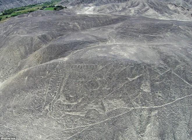 Phát hiện dị thường: Hình vẽ cá voi sát thủ dài 70m giữa sa mạc huyền bí ở Peru - Ảnh 3.