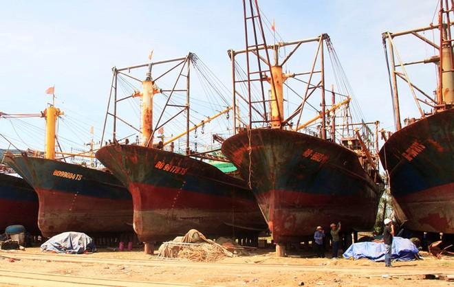 Nam Triệu sẽ xem xét đền bù hợp lý cho ngư dân - Ảnh 1.