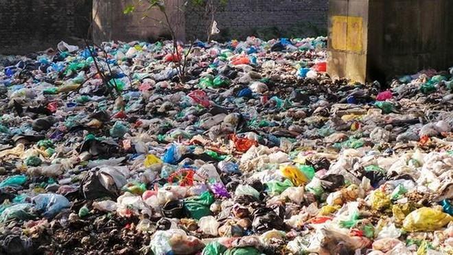 Bãi rác ngập dưới chân cầu Thăng Long - Ảnh 3.