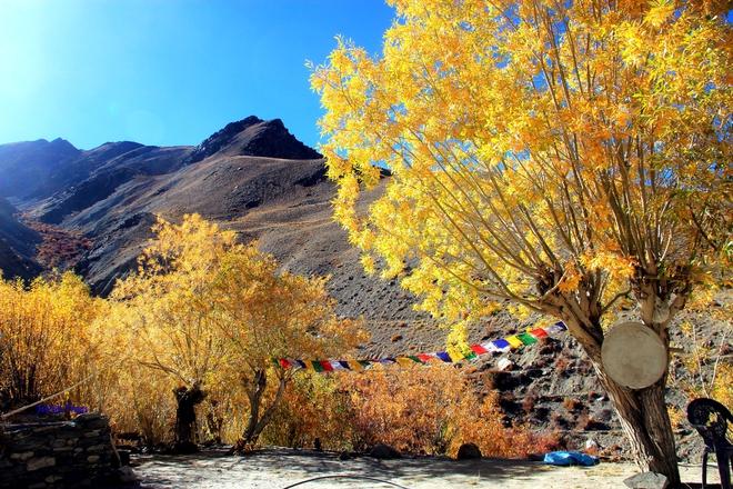 """Mùa thu ở Ladakh: Hành trình trải nghiệm của 1 phụ nữ Việt đến nơi đẹp tựa """"thiên đường ẩn giấu"""" ở Ấn Độ - Ảnh 19."""