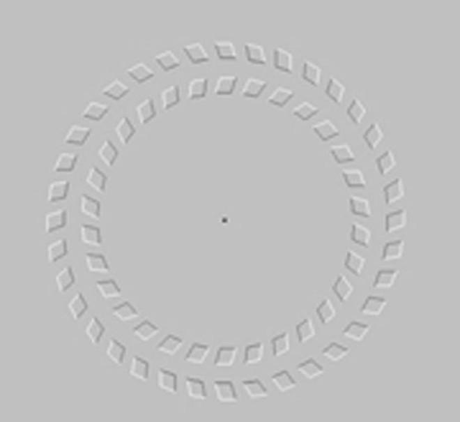 10 ảo ảnh thị giác vi diệu này sẽ thôi miên trí não bạn như thể ma thuật vậy - Ảnh 4.