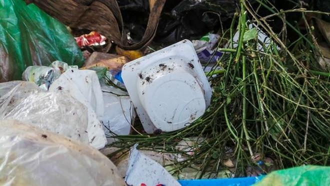 Bãi rác ngập dưới chân cầu Thăng Long - Ảnh 4.