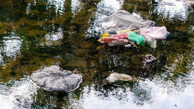 Bãi rác ngập dưới chân cầu Thăng Long - Ảnh 5.