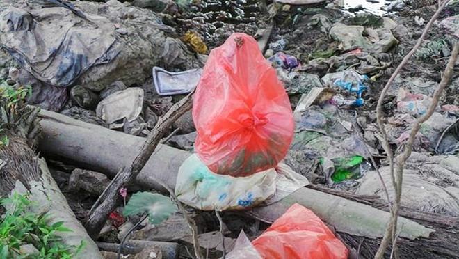 Bãi rác ngập dưới chân cầu Thăng Long - Ảnh 7.