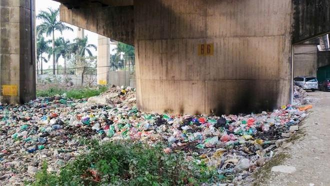 Bãi rác ngập dưới chân cầu Thăng Long - Ảnh 8.