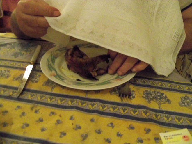 Cái giá phải trả cho 8 món ăn đỉnh cao của ẩm thực là những cái chết đau đớn của động vật - Ảnh 8.