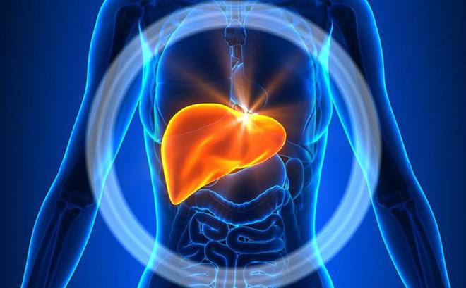 Nếu không biết 4 điều này, có thể bạn sẽ không biết cách bảo vệ gan của mình