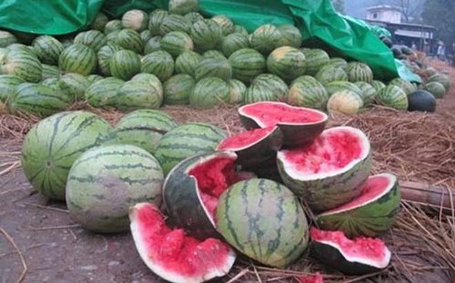 """Hàng loạt nông sản Việt """"chết"""" vì Trung Quốc ngừng mua"""